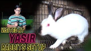 Visited at Yasir Rabbits setup 2018 (Jamshed Asmi Informative Channel) In urdu/hindi