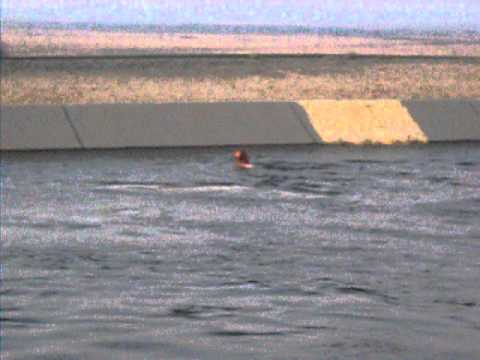 Guy Jumping Into CA Aqueduct!! He Lost His Lure An Wanted It Back HaHa!! So He Said