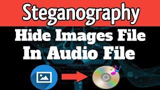 Steganography - Hide Data In Audio Files   TechnoRelate