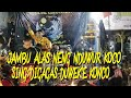 Jambu Alas Jaranan Brandal Lokajaya Goro Goro Bojomu Semangatku  Mp3 - Mp4 Download