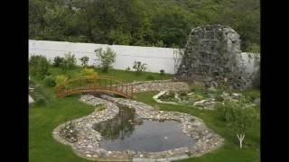 видео оформление пруда