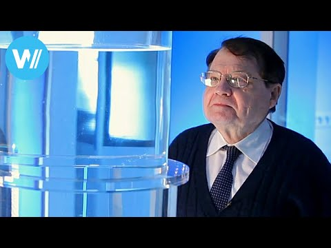 Water Memory Documentary of 2014 about Nobel Prize laureate Luc Montagnier