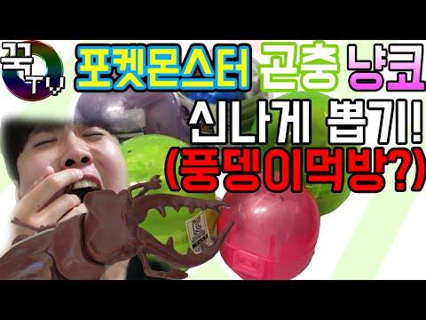 고퀄리티 포켓몬스터,곤충,냥코 신나게뽑기!! (풍뎅이먹방?ㅋㅋ) 가챠 가샤폰 [ 꾹TV ]