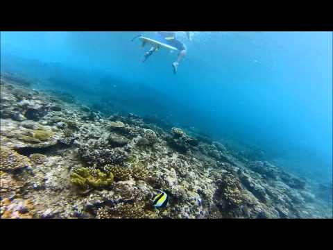 Fiji, Tavarua - Cloudbreak and restaurant surfing