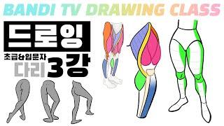 반디쌤과 함께하는 인체드로잉 3강✍ (다리) How To Draw Figures / 사람그리는 법