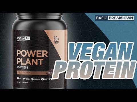 Prana ON Power Plant Vegan Protein Powder Supplement Review   Basic Breakdown