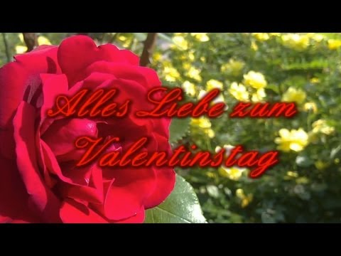Valentinsgrüße: Alles Liebe Zum Valentinstag