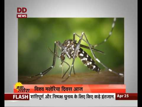 World Malaria Day being observed today