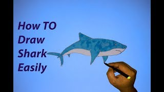 How to draw a shark step by step easily-Draw With Shamim