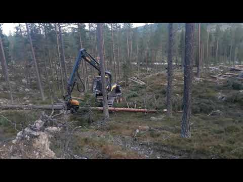 Edsta skog's  PONSSE SCORPION KING