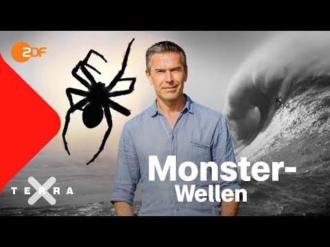 Riesenwellen und fliegende Spinnen   Dirk Steffens   Ganze Folge Terra X