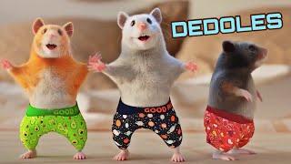 DEDOLES REKLAMA PARTY SONG, TANECNA...