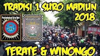 Video TERATE & WINONGO MENYAMBUT 1 SURO (SURONAN & SURAN AGUNG) download MP3, 3GP, MP4, WEBM, AVI, FLV September 2018