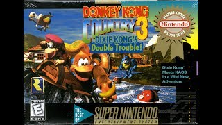 Live Stream de Donkey Kong Country 3 - Dixie Kong's Double Trouble - 103%