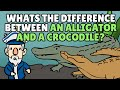 What's the Difference Between an Alligator and a Crocodile? | Best Learning Videos For Kids