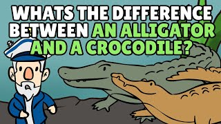 What's the Difference Between an Alligator and a Crocodile?