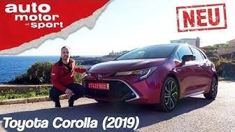 Toyota Corolla (2019): Das Mittel gegen Golf-Langeweile? – Review/Fahrbericht   auto motor & sport