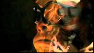 The Killers - Zombie Hands (Halloween song)