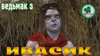 Прохождение Ведьмак 3 : Дикая Охота | Дела Семейные,поиски Анны #15