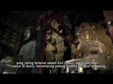 serunya-wisata-sejarah-sambil-menikmati-alam-kota-nara-jepang-|-wisata-halal-cheria-holiday