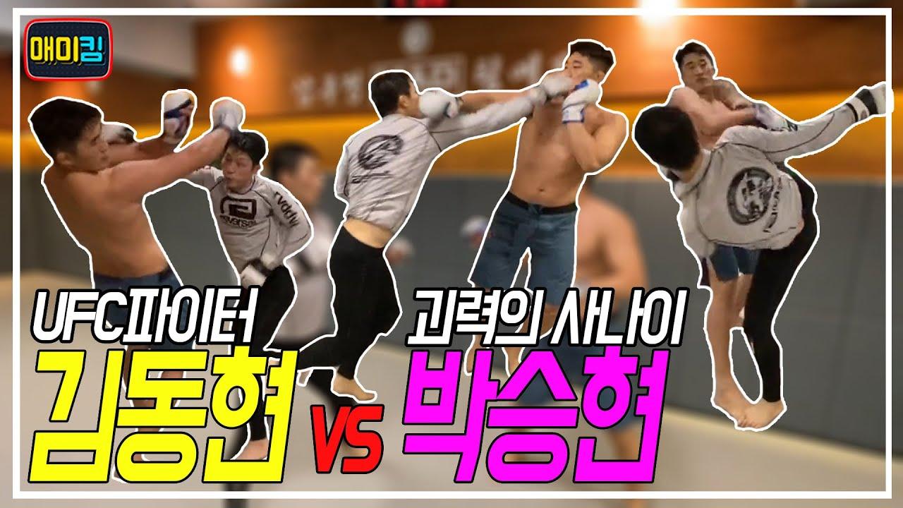 괴력의 사나이 vs UFC김동현 MMA 100%스파링