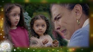 La Rosa de Guadalupe: Chatita decide renunciar a sus nietas   Tatita