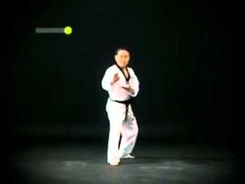 Taekwondo Black Belt Poomsae - 4th DAN Pyongwon