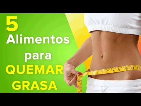 Dietas doctor rafael bolio gratis cambio de metabolismo