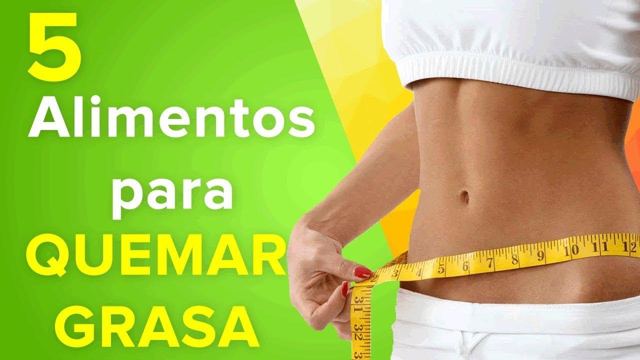 Dietas del doctor bolio para reducir abdomen