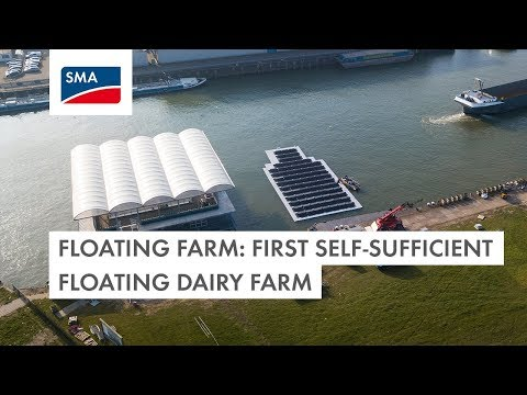 Floating Farm: first self-sufficient floating dairy farm
