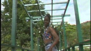 BYRON LEE AND THE DRAGONAIRES - SOCA BUTTERFLY (MUSIC VIDEO).avi