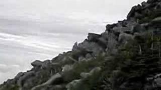 Mount Katahdin Abol trail