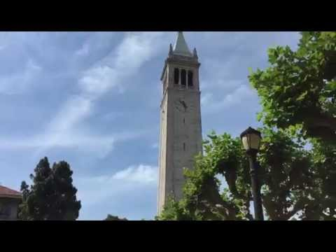 My UC Berkeley CalSO Experience