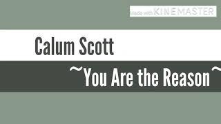 Calum Scott - You Are The Reason Lyric