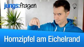 Repeat youtube video jungs:fragen | Hornzipfel - Pickel am Eichelrand
