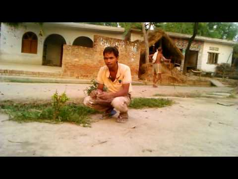 Ritesh pandey all bewafai bhojpuri videos download(2)