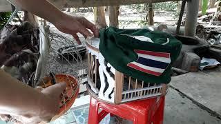 Khoe hàng Lồng đi mồi của thái lan.tập chim cu thái ra cây.thế hiển 0914395359 cà mau