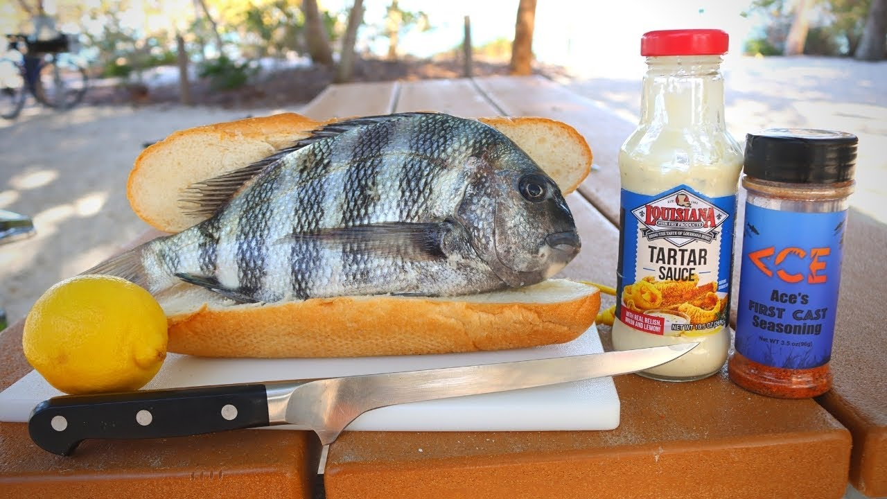 Making a Sheepshead Sandwich!! Fishing Florida 🌴