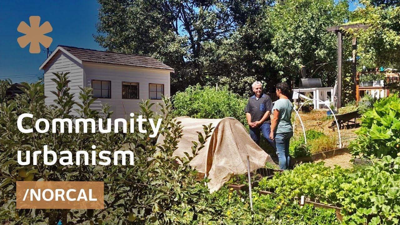Bottom-up urbanism solves urgent housing needs in CA vicinity