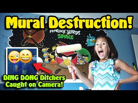 MURAL DESTRUCTION!!! Ding Dong Ditch Caught on Camera!