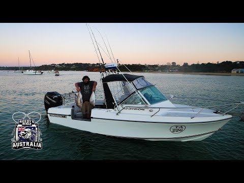 Fishing Edencraft 6m offshore Boat Snapper Fishing In Style Final Cut
