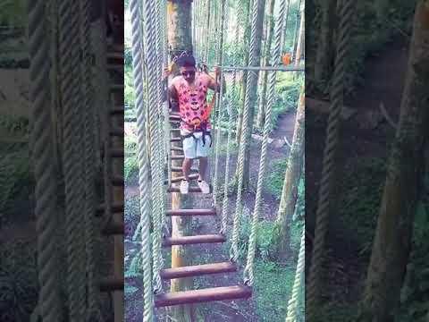 Bali Treetop and Adventure Park