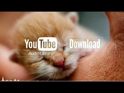 Good Starts - Jingle Punks (No Copyright Music) 1 Hour Loop