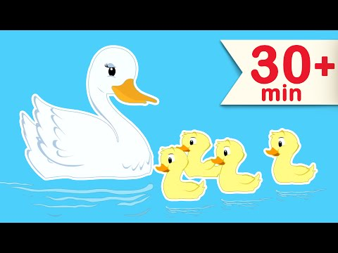 Five Little Ducks Went Out One Day | Nursery Rhymes For Children By Babyloonz TV