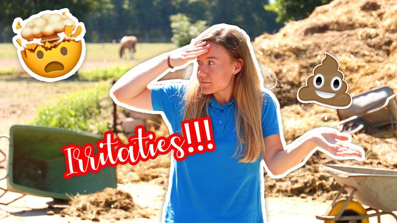IRRITATIES op een PENSIONSTAL! | felinehoi SKETCH