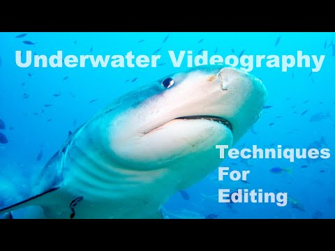 Episode #7 - Basic Editing Techniques for Underwater Footage