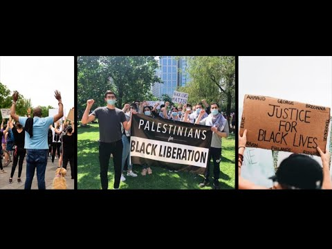 Supporting the Right to Dissent: Palestine Legal's Big 2020 Campaign