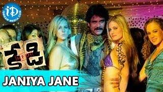 Kedi Telugu Movie - Janiya Jane Video Song || Nagarjuna, Mamata Mohandas || Sandeep Chowta
