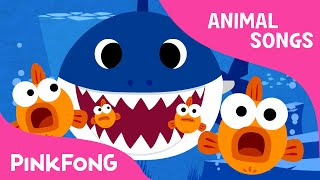 Baby Shark | Animal Songs | PINKFONG Songs for Chi