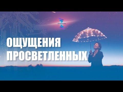 Что делают с ощущениями просветленные. ЮНЕВЕРСУМ. Проект Вячеслава Юнева